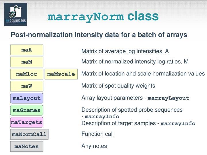 marrayNorm