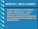 archetype 1 limits to growth