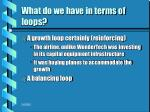 what do we have in terms of loops