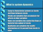what is system dynamics