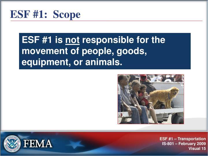ESF #1:  Scope
