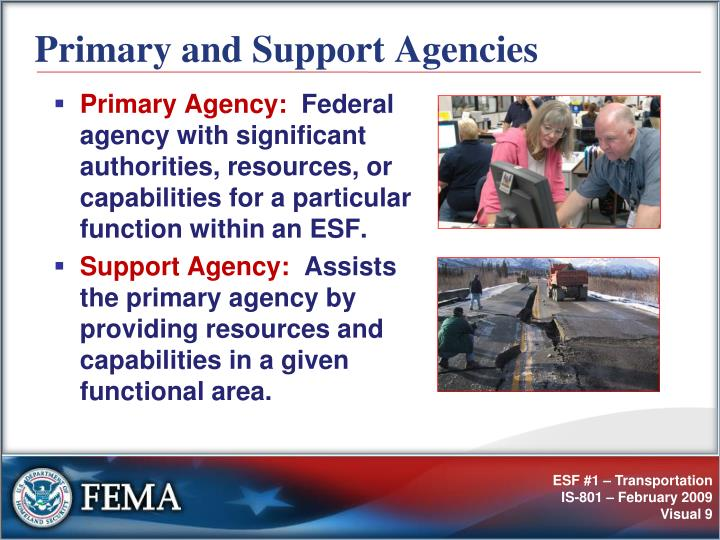Primary and Support Agencies