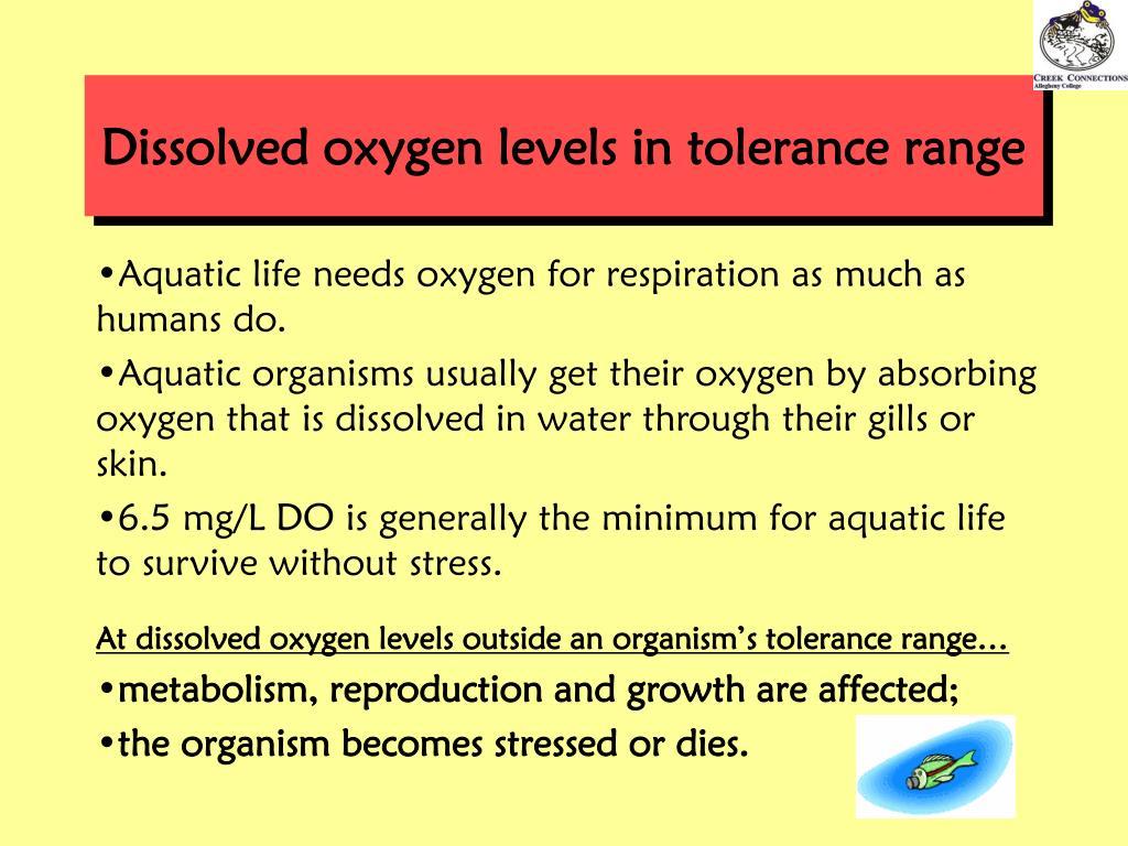 Dissolved oxygen levels in tolerance range