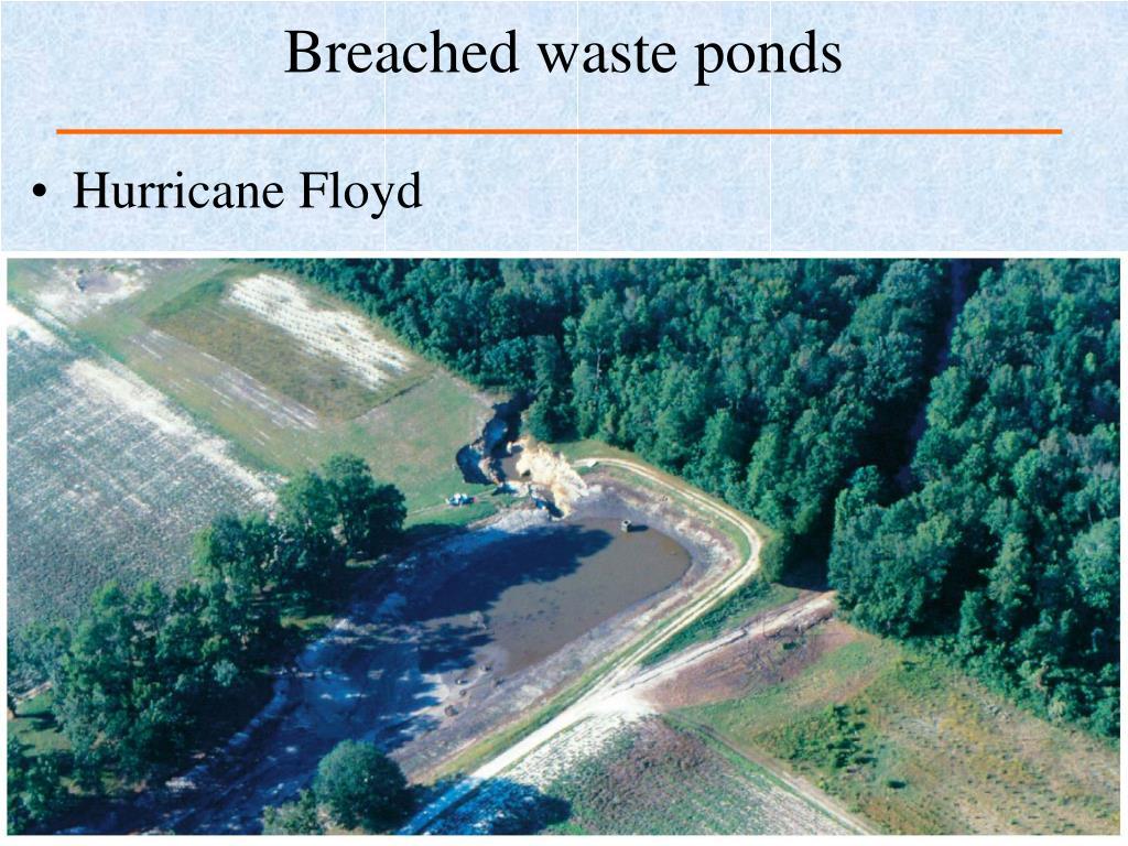 Breached waste ponds
