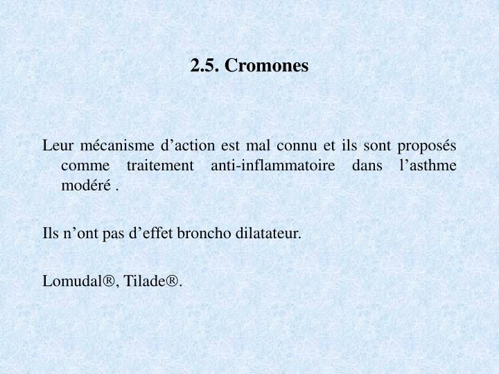 2.5. Cromones