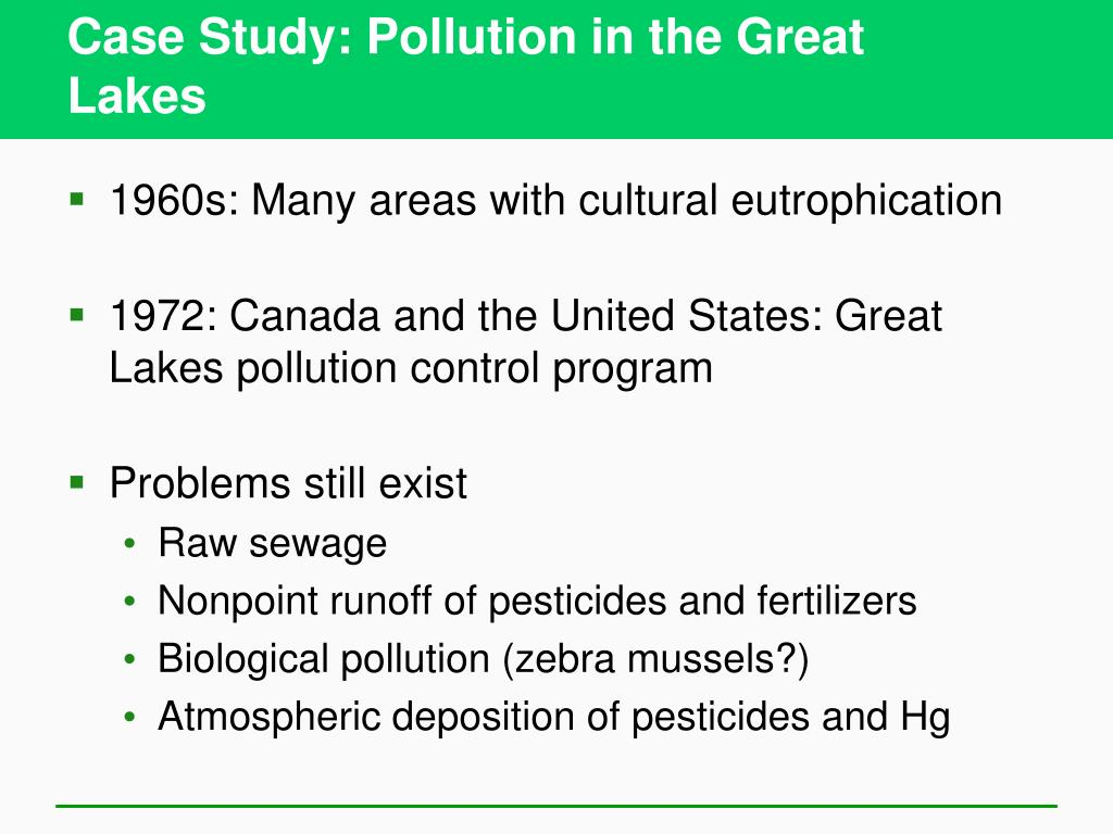Case Study: Pollution in the Great
