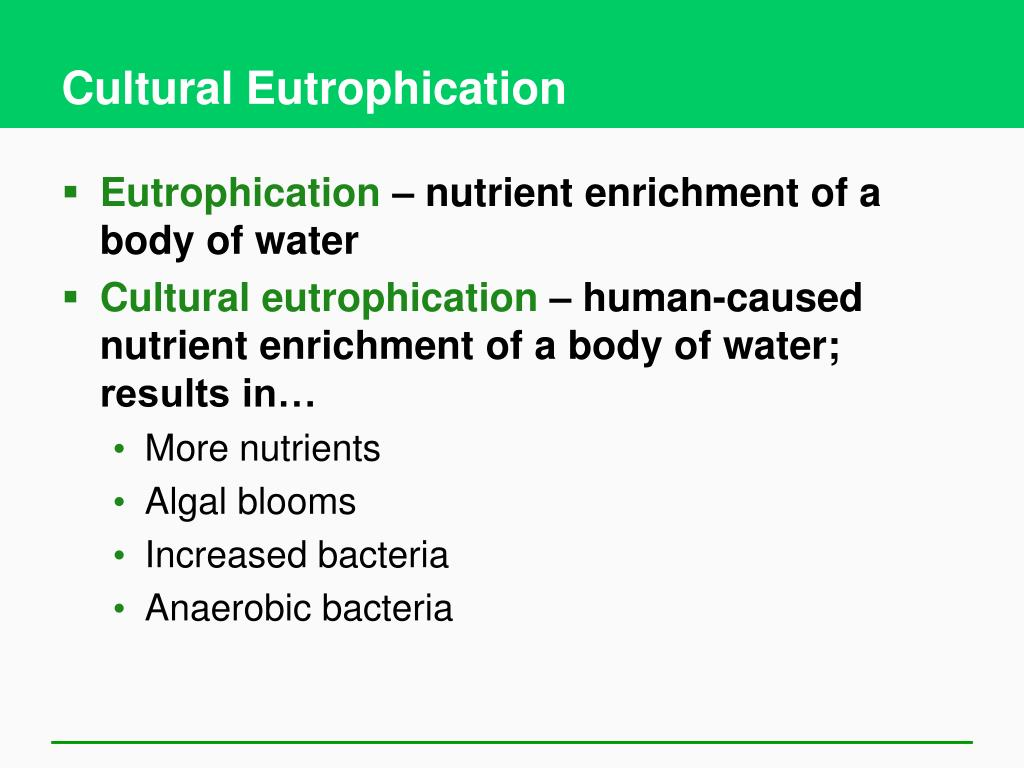 Cultural Eutrophication