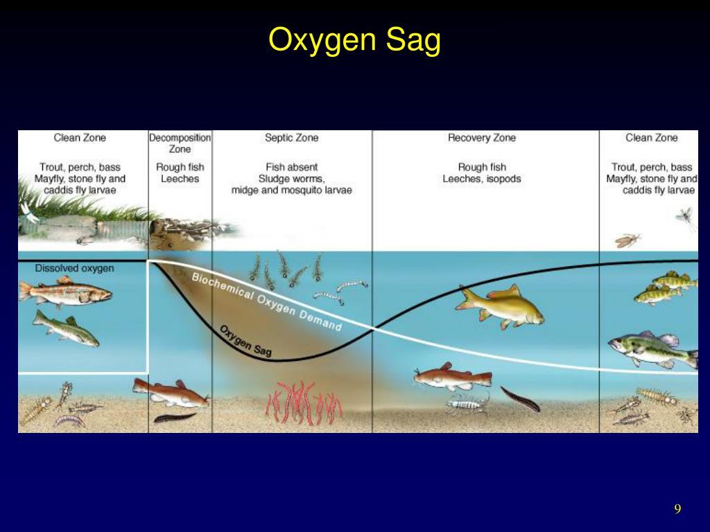 Oxygen Sag