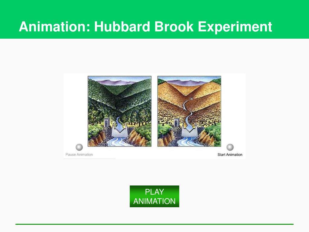 Animation: Hubbard Brook Experiment