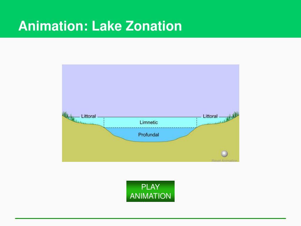 Animation: Lake Zonation