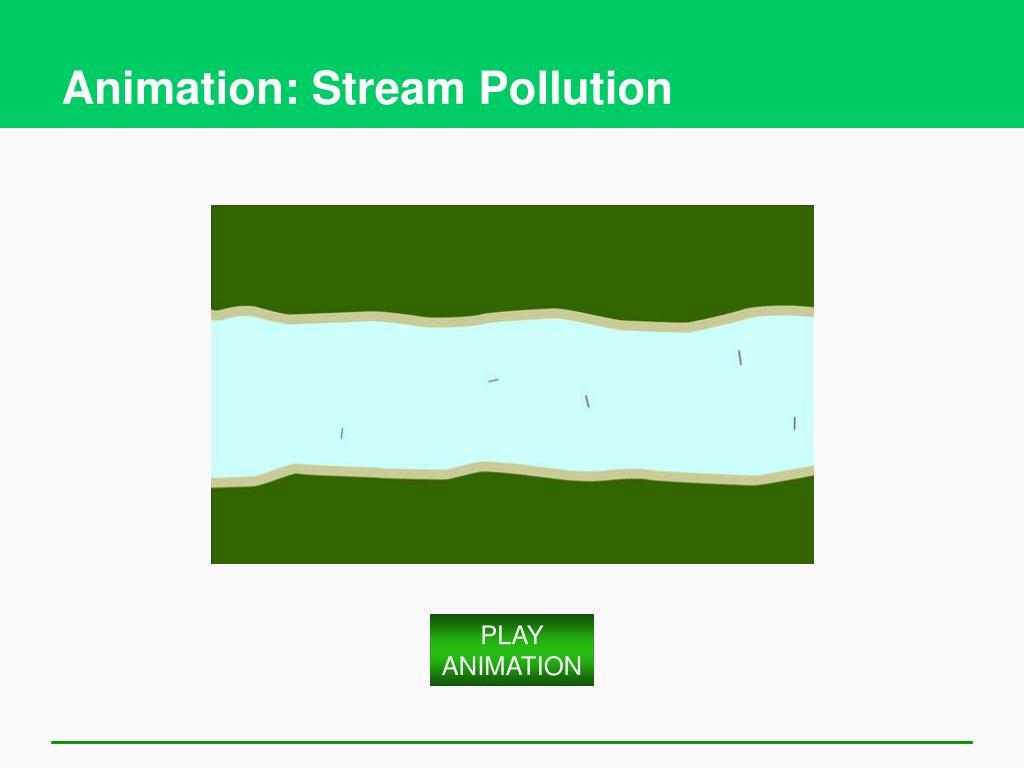 Animation: Stream Pollution