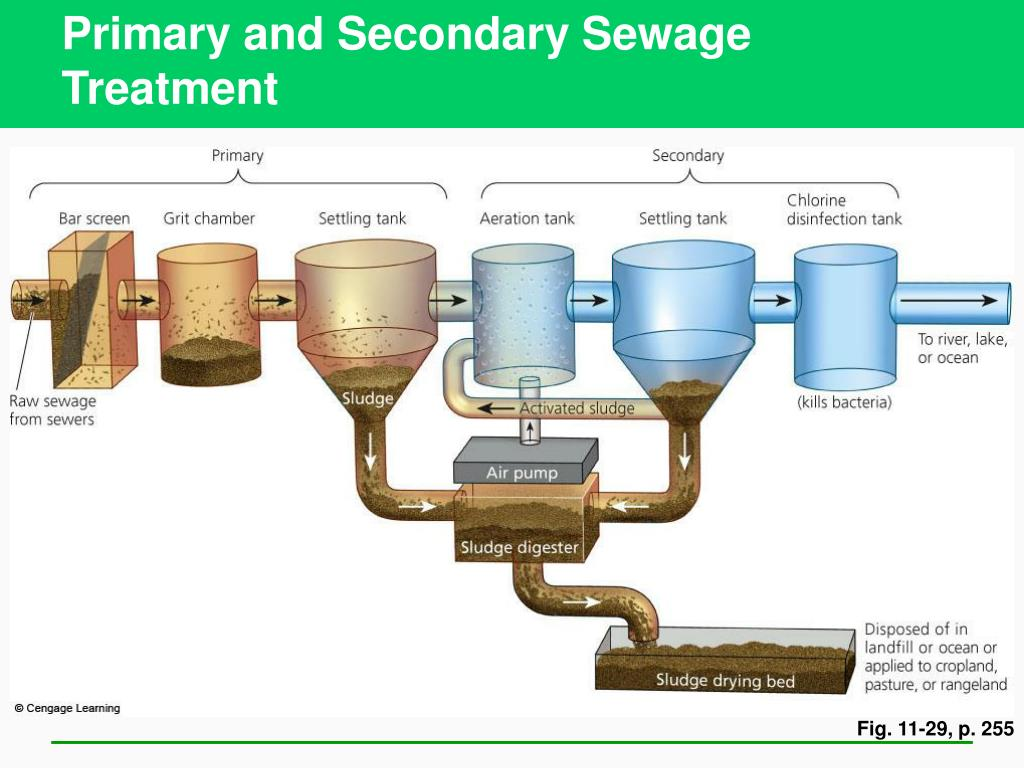 Primary and Secondary Sewage Treatment
