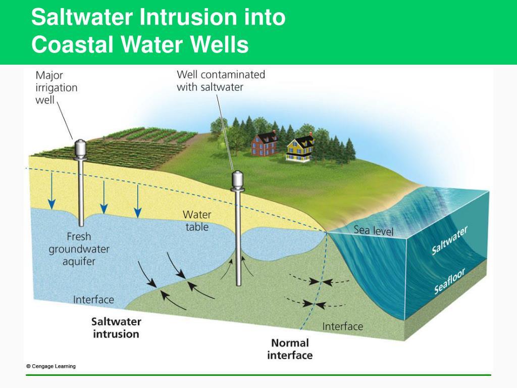 Saltwater Intrusion into