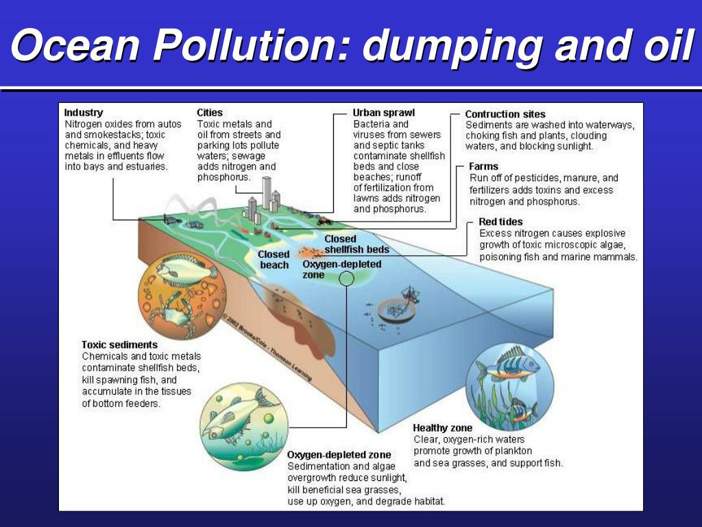 Ocean Pollution: dumping and oil