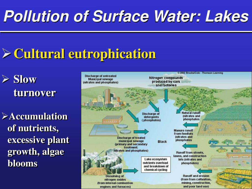 Pollution of Surface Water: Lakes