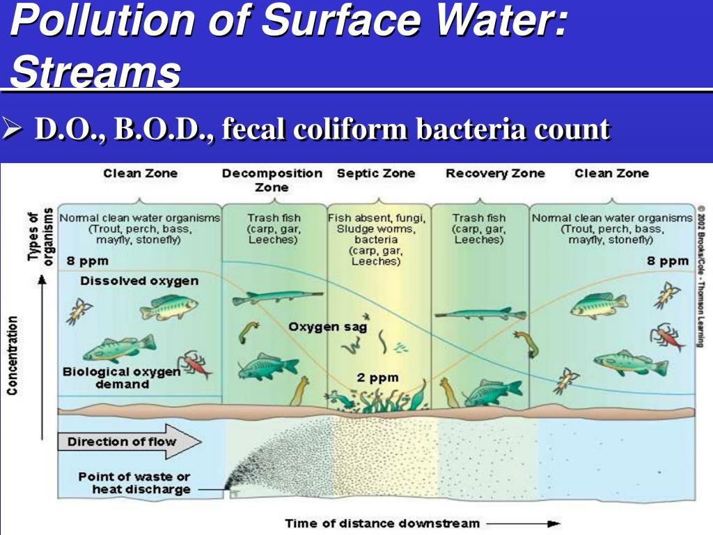 Pollution of Surface Water: Streams