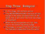 step three biological