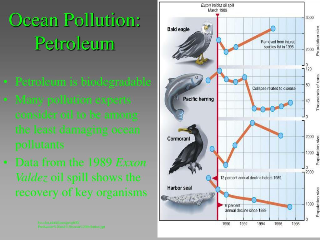 Ocean Pollution: