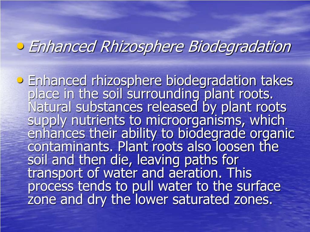 Enhanced Rhizosphere Biodegradation
