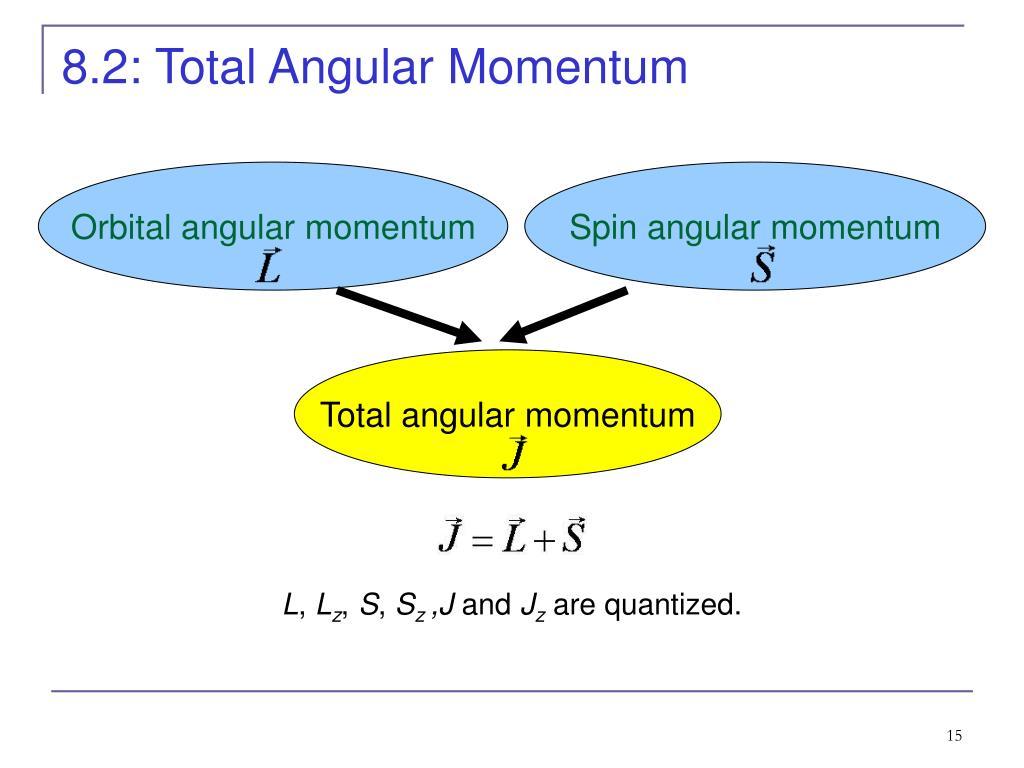 8.2: Total Angular Momentum