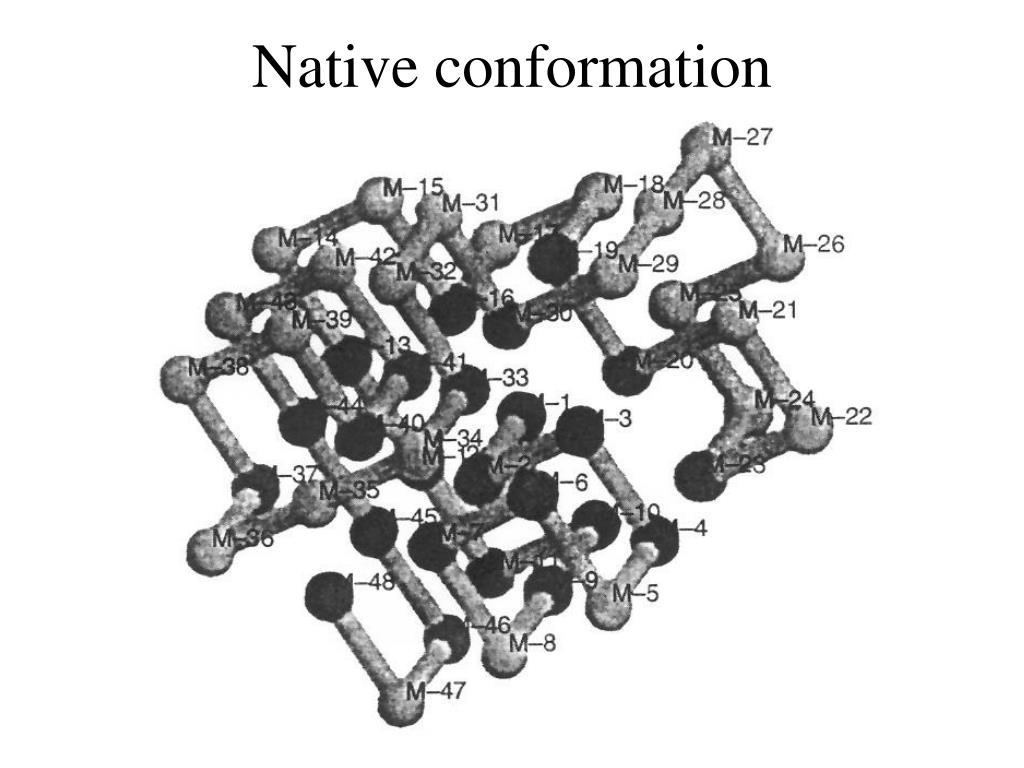Native conformation