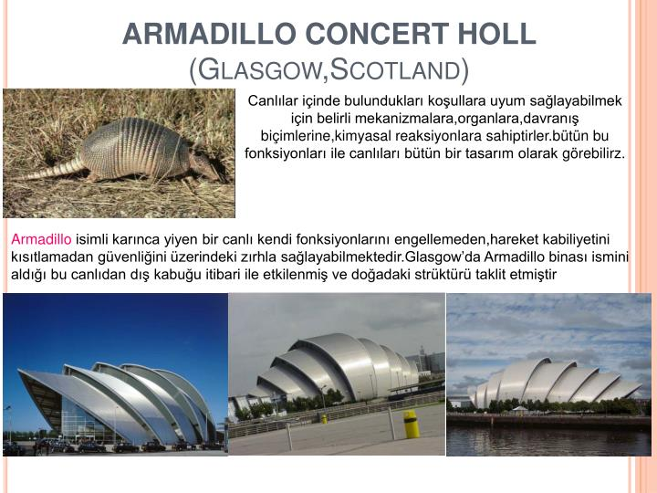ARMADILLO CONCERT HOLL
