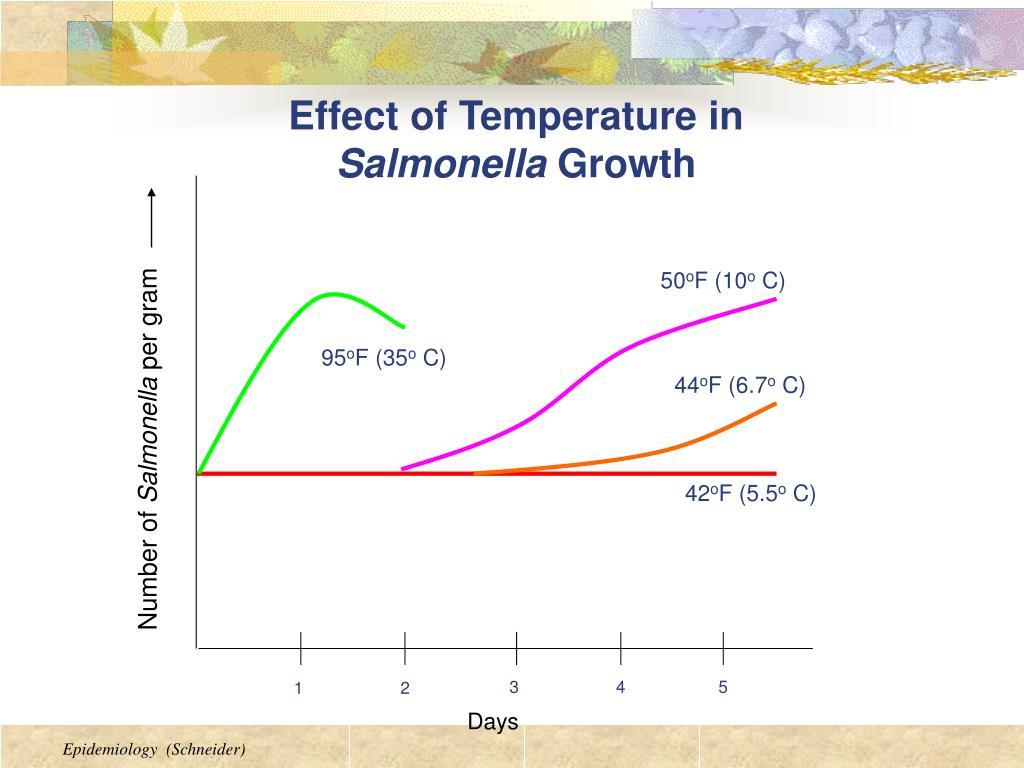 Effect of Temperature in