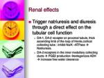 renal effects1