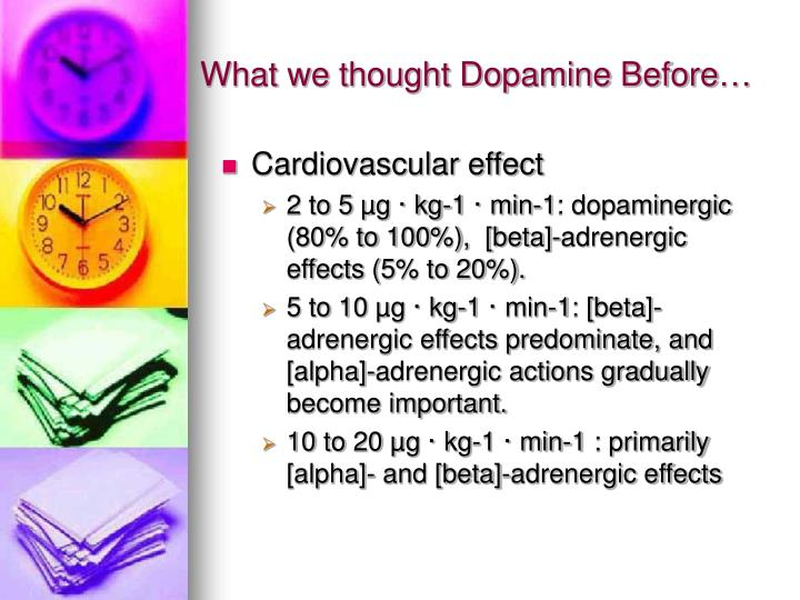 What we thought Dopamine Before…