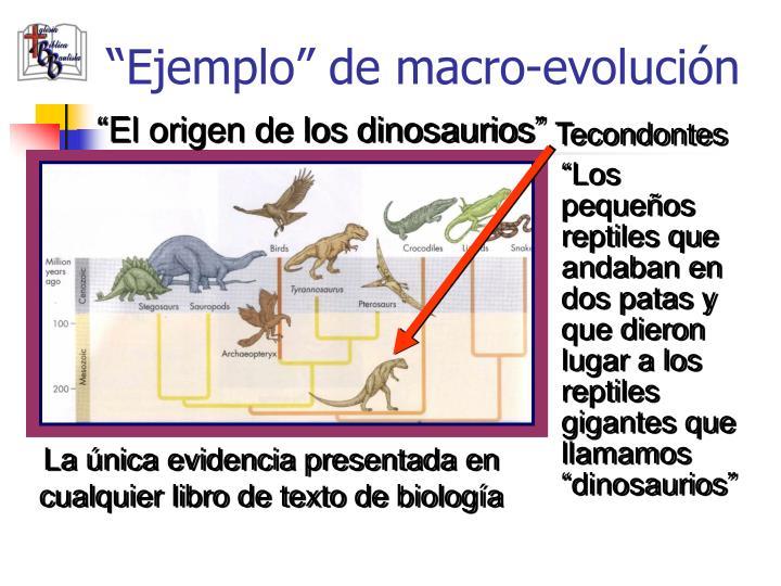 """""""Ejemplo"""" de macro-evolución"""