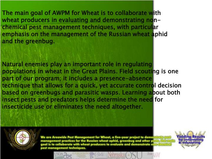 The main goal of AWPM for Wheat is to collaborate with wheat producers in evaluating and demonstrati...