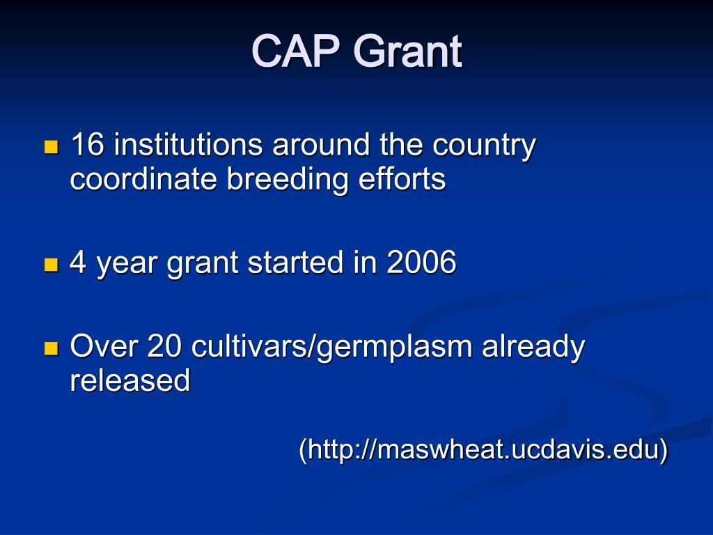 CAP Grant