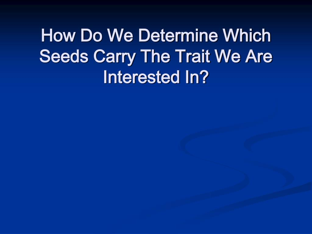 How Do We Determine Which Seeds Carry The Trait We Are Interested In?