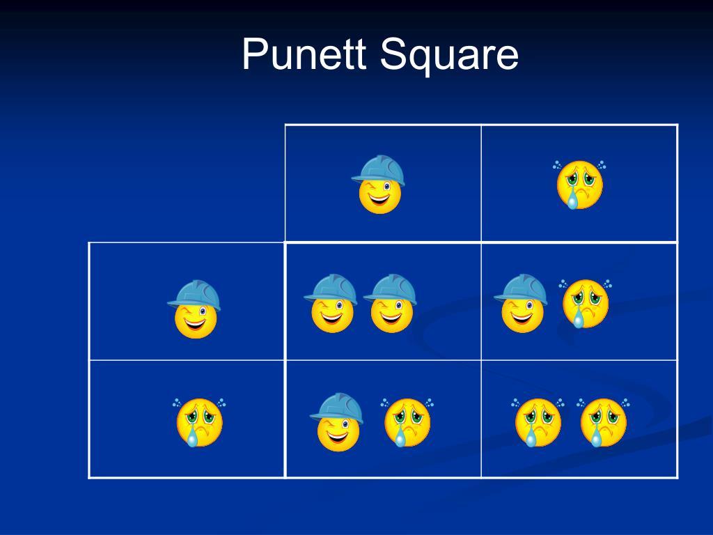 Punett Square