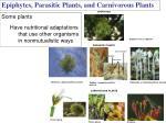 epiphytes parasitic plants and carnivorous plants