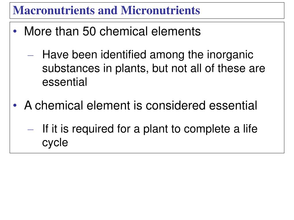 More than 50 chemical elements