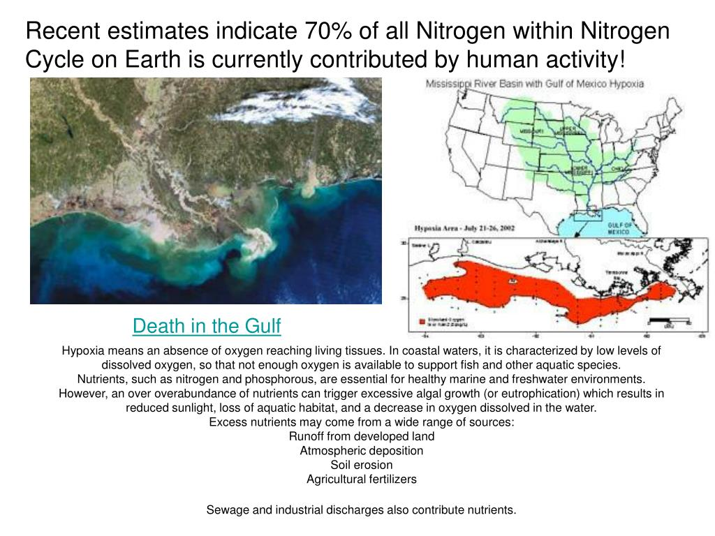 Recent estimates indicate 70% of all Nitrogen within Nitrogen Cycle on Earth is currently contributed by human activity!