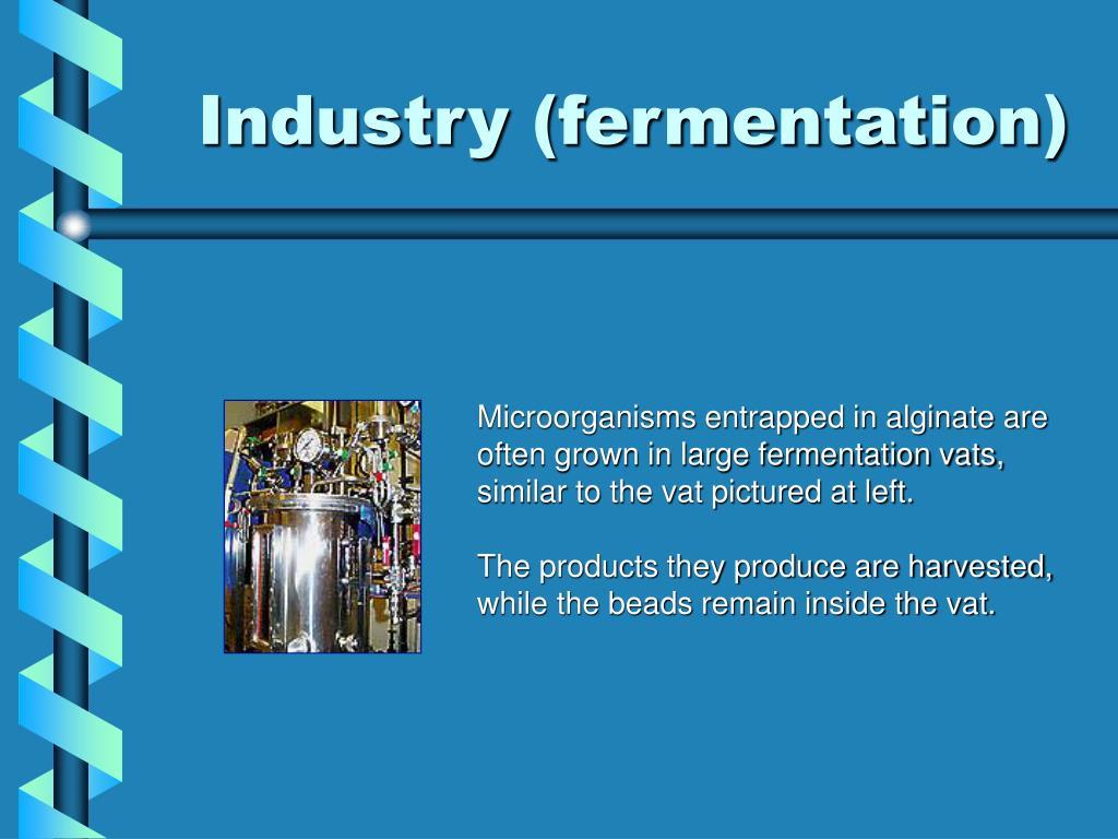 Industry (fermentation)
