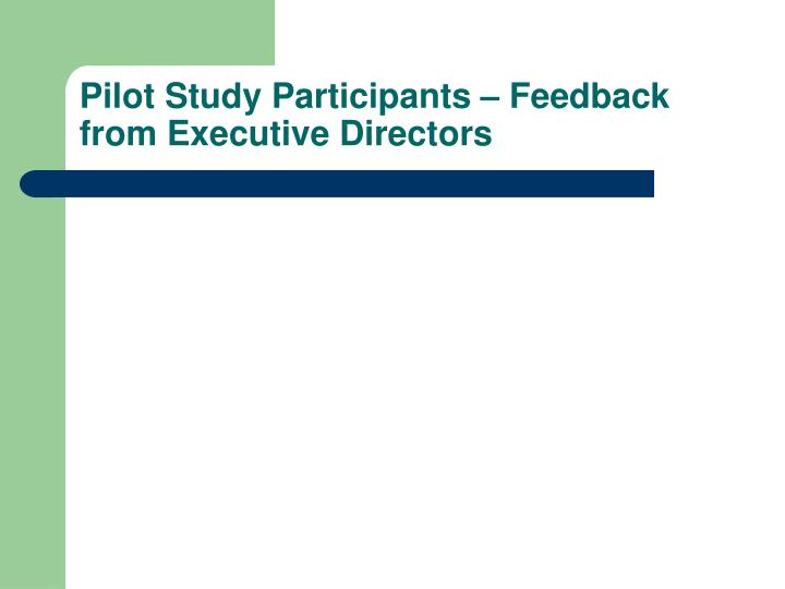 Pilot Study Participants – Feedback from Executive Directors