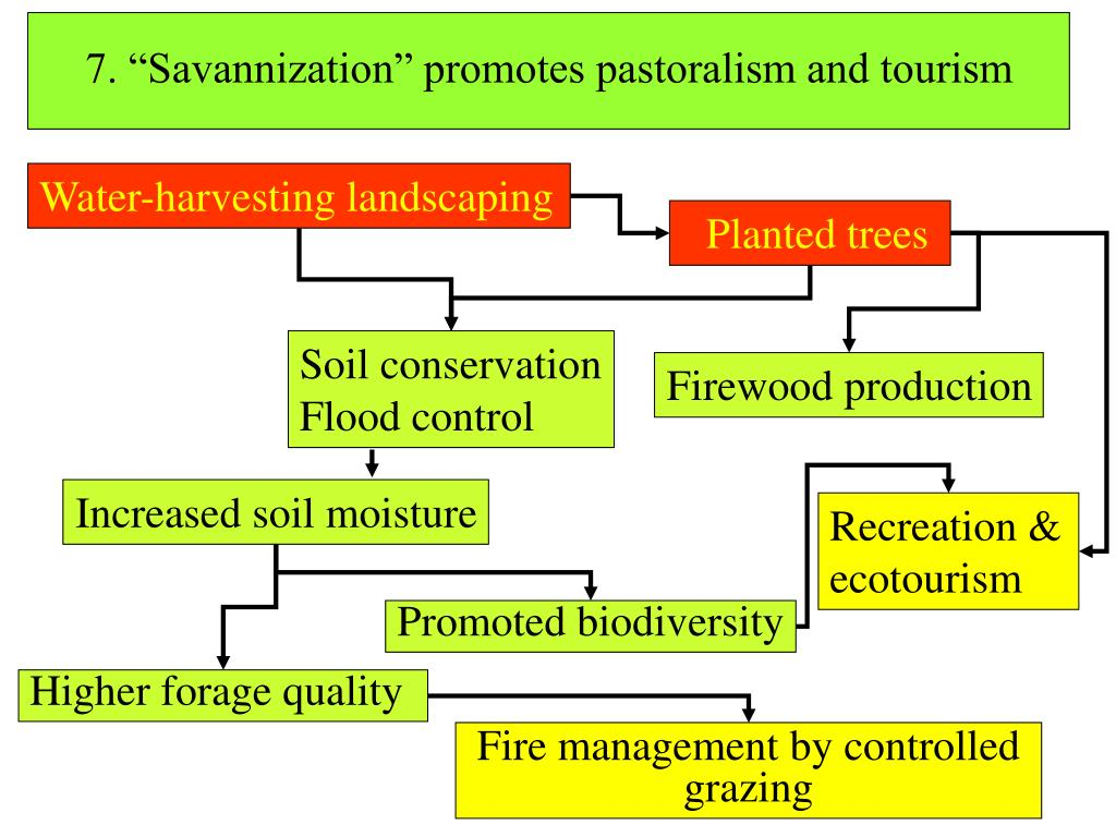 "7. ""Savannization"" promotes pastoralism and tourism"