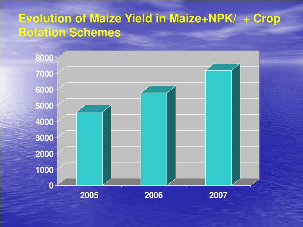 Evolution of Maize Yield in Maize+NPK/  + Crop Rotation Schemes