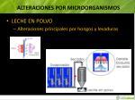alteraciones por microorganismos6