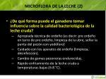 microflora de la leche 21
