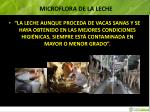 microflora de la leche2