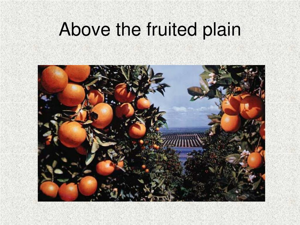Above the fruited plain