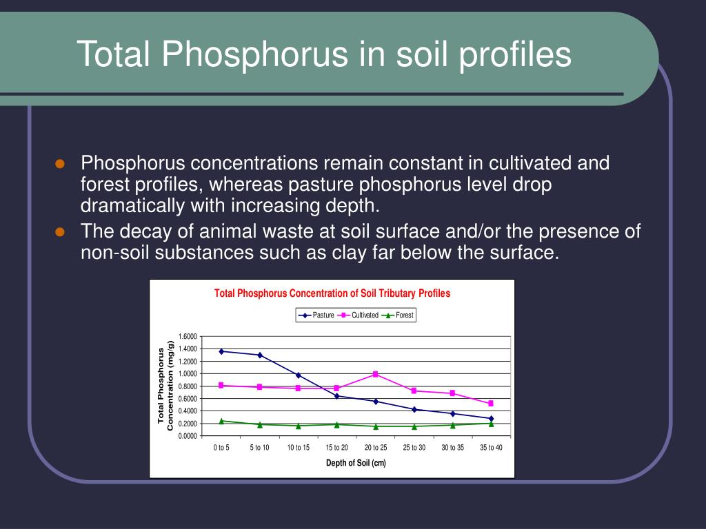 Total Phosphorus in soil profiles