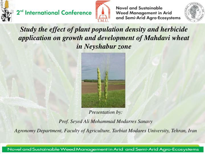 Study the effect of plant population density and herbicide application on growth and development of ...