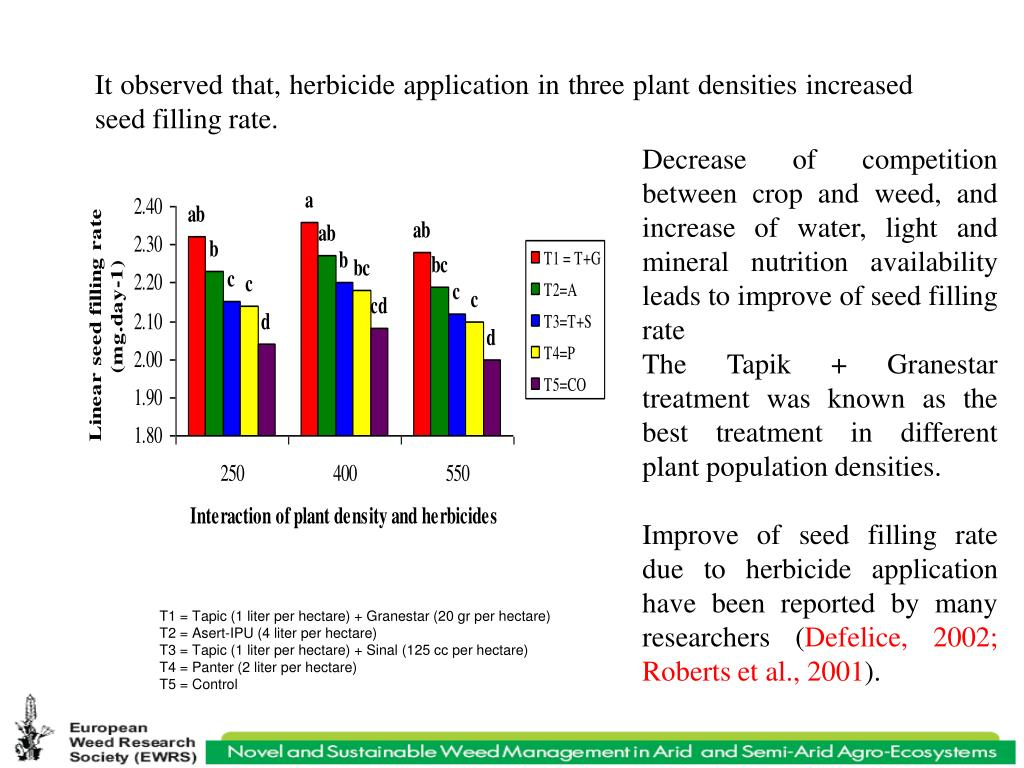 It observed that, herbicide application in three plant densities increased seed filling rate.