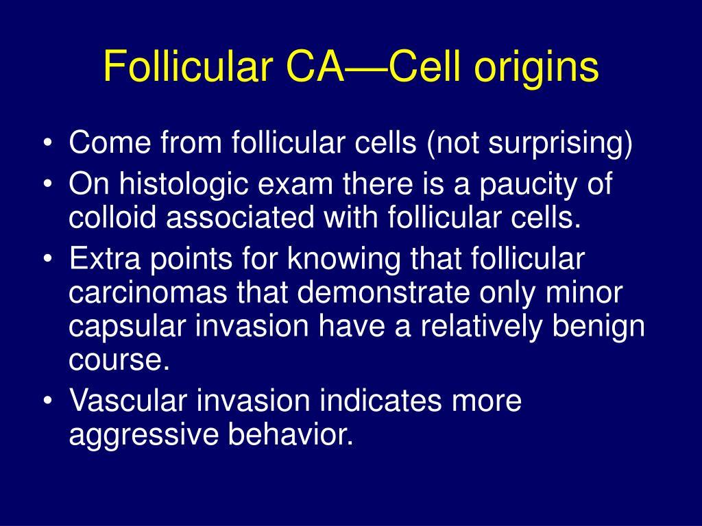 Follicular CA—Cell origins