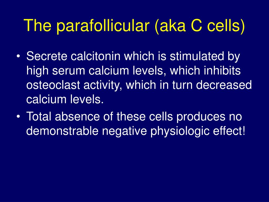 The parafollicular (aka C cells)